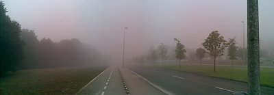 Another picture of the bike lane, I really liked the feeling of the fog in my face!